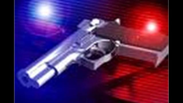 Gibson County Man Arrested After Allegedly Firing Shots at a Person
