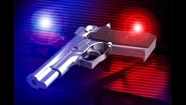 Evansville Home Shooting
