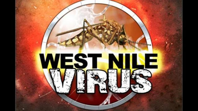 1st West Nile Virus of 2014 Confirmed in Indiana