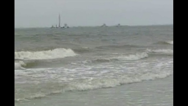 Oil Spill Affects Wildlife in Texas