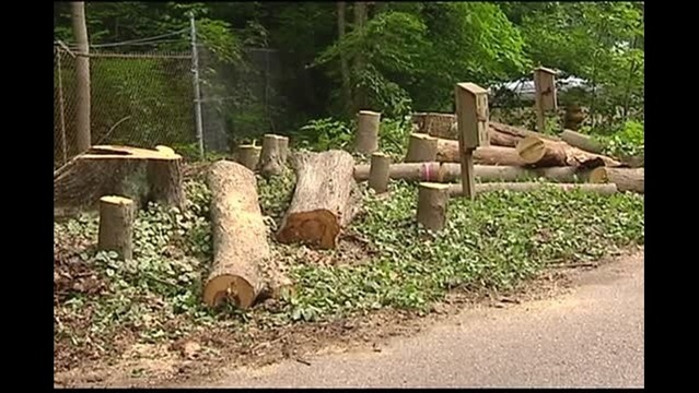 Entrance Construction Begins at Wesselman Woods
