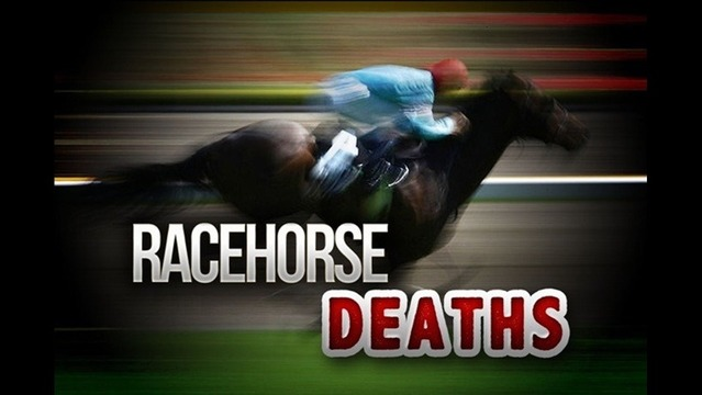Deadly Mystery Surrounds Famous Horse Track