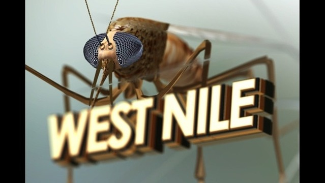 Person Confirmed with West Nile in Indiana