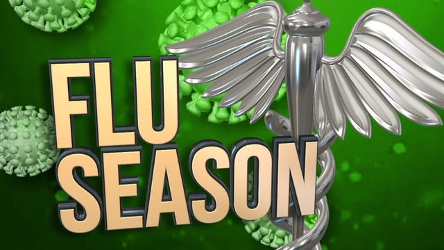 IN Health Officials Report First Flu-Related Death of Flu Season