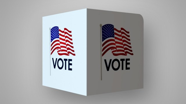 Henderson City Leaders Discuss Eliminating Primary Elections