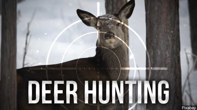 Indiana hunters allowed to use high-powered rifle cartridges for hunting deer