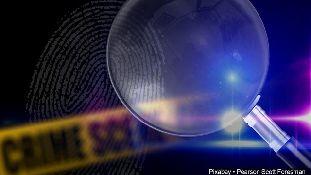 Indianapolis police investigating discovery of 2 bodies