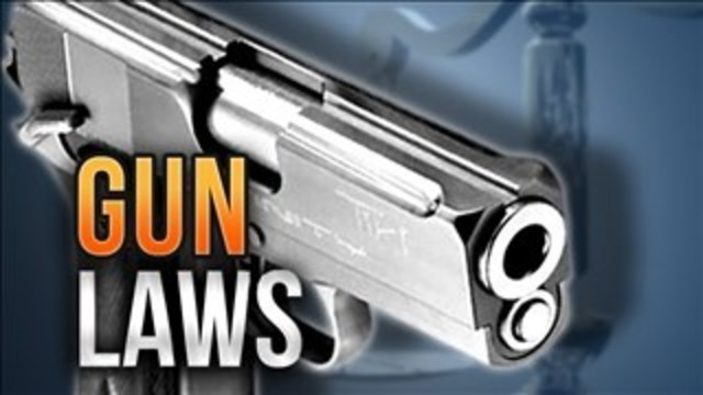 Rauner Plans To Veto Gun Dealer Licensing Legislation
