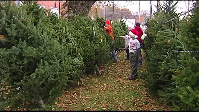 boy scouts selling christmas trees and wreaths - Boy Scout Christmas Trees