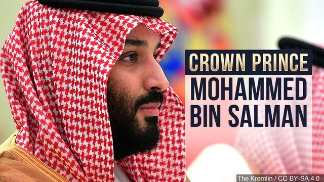 Sen. Young helps introduce resolution to hold Saudi Prince accountable