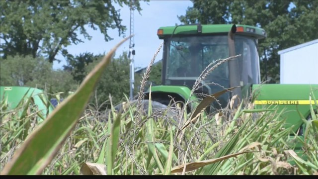 Indiana loses 2,000 farms in five years